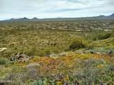8035 Lone Mountain Road - Photo 4