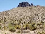 000 Mesquite Road - Photo 2