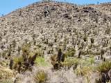 000 Mesquite Road - Photo 4