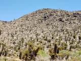 000 Mesquite Road - Photo 6