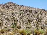 000 Mesquite Road - Photo 7