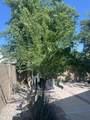 2277 Pecos Drive - Photo 116