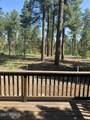 4172 Stone Pine Drive - Photo 5