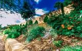 2113 Desert Dawn Court - Photo 65