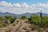 13316 Blue Coyote Trail - Photo 12