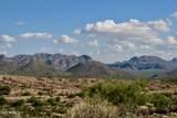 13316 Blue Coyote Trail - Photo 13