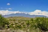 13316 Blue Coyote Trail - Photo 2