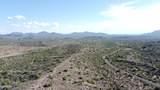 13316 Blue Coyote Trail - Photo 33