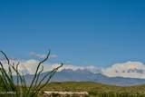 13316 Blue Coyote Trail - Photo 4