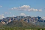 13316 Blue Coyote Trail - Photo 5