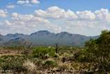 13316 Blue Coyote Trail - Photo 6