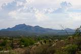 13316 Blue Coyote Trail - Photo 9