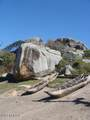 123 Development Site Madagascar Land - Photo 20
