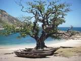123 Development Site Madagascar Land - Photo 32