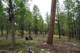2071 Pine Canyon Drive - Photo 10