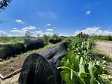 TBD Dream View Lane - Photo 52
