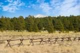 970 Appaloosa Trail - Photo 12