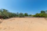 8402 Desert Cove Avenue - Photo 41