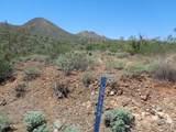 16124 Desert Fox Parkway - Photo 10