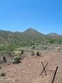 16124 Desert Fox Parkway - Photo 11