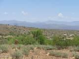 16124 Desert Fox Parkway - Photo 6