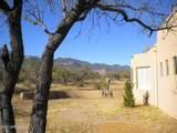 6197 Calle De La Rosa - Photo 19
