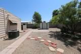 3443 Sandra Terrace - Photo 38