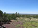 10810 High Mesa Trail - Photo 32