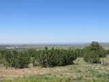 10810 High Mesa Trail - Photo 34