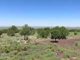 10810 High Mesa Trail - Photo 36