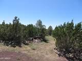 10810 High Mesa Trail - Photo 37