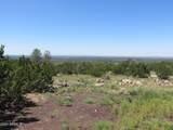 10810 High Mesa Trail - Photo 38