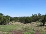 10810 High Mesa Trail - Photo 39