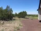10810 High Mesa Trail - Photo 43