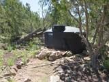 10810 High Mesa Trail - Photo 46