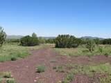 10810 High Mesa Trail - Photo 49