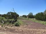 10810 High Mesa Trail - Photo 55
