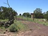 10810 High Mesa Trail - Photo 56