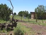 10810 High Mesa Trail - Photo 59