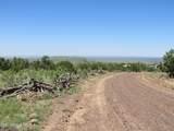 10810 High Mesa Trail - Photo 60