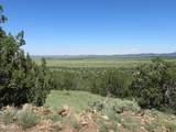 10810 High Mesa Trail - Photo 64