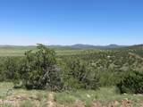 10810 High Mesa Trail - Photo 65