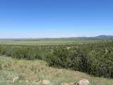 10810 High Mesa Trail - Photo 67