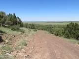 10810 High Mesa Trail - Photo 68
