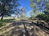 1734 Rolling Hills Drive - Photo 31