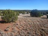 0000 Show Low Pines - Photo 1