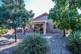 30610 Coral Bean Drive - Photo 12