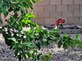 12938 Columbine Court - Photo 62