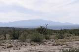 TBD Caballo Trail - Photo 3