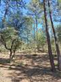 805 Monument Valley Drive - Photo 11